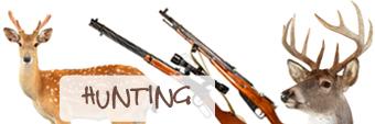 polowania1